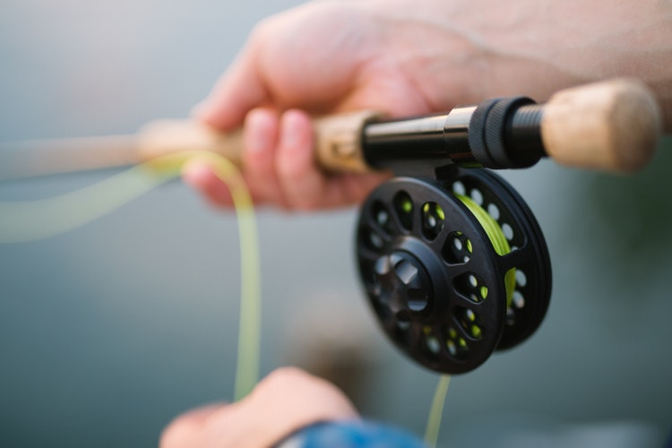 Licenses and Stamps | Angler Action Foundation